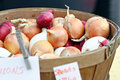 Basket of Onions Royalty Free Stock Images