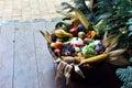 Basket of organic food vegetables Royalty Free Stock Photo