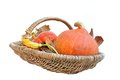 Basket  with pumpkins Royalty Free Stock Photos
