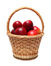 Basket with red apples Stock Images