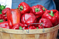 Basket of Red Peppers Royalty Free Stock Images