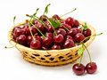 Basket with ripe wet cherry isolated Royalty Free Stock Photography