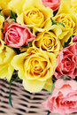 Basket of roses Royalty Free Stock Photo