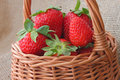 Basket with strawberries close up of Royalty Free Stock Photo