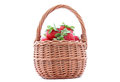 Basket with strawberries wicker isolated on white Stock Image
