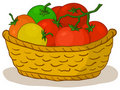 Basket with tomatoes Royalty Free Stock Images