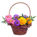 Basket of various flowers Royalty Free Stock Photo