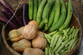 Basket of vegetables from vendor Royalty Free Stock Photo