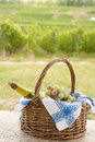 Basket and vineyard Royalty Free Stock Image