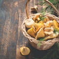 Basket with wild mushrooms chanterelles on a dark background Royalty Free Stock Photo