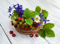 Basket with wild strawberries and wildflowers Royalty Free Stock Photo