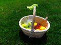 Basket with wine and fruit Stock Images