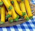 Basket with zucchini Royalty Free Stock Images