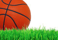 Basketball ball on green grass over white Royalty Free Stock Photo