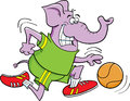 Basketball elephant Royalty Free Stock Image