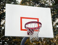 Basketball hoop with autumn leaves in background Royalty Free Stock Images