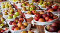 Baskets of apples at a fruit stand Royalty Free Stock Photo