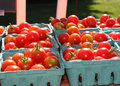 Baskets of cherry tomatoes for sale at a farmer s market Royalty Free Stock Image