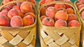 Baskets of Fresh Ripe Peaches Royalty Free Stock Image