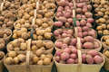 Baskets of potatoes Royalty Free Stock Photo
