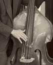 Bass Fiddle Royalty Free Stock Photo