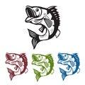Bass fish. Fishing mascot. Template bass fish. Fish jumping. Royalty Free Stock Photo