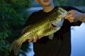Bass Fishing Catch Royalty Free Stock Photo