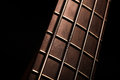 Bass fret board detail of the of a guitar on a dark background Royalty Free Stock Images