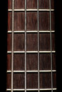 Bass fret board detail of the of a guitar on a dark background Royalty Free Stock Photography