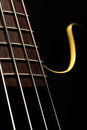 Bass fret board Royalty Free Stock Photo