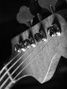 Bass guitar headstock closeup Royalty Free Stock Photo