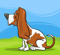 Basset hound dog cartoon illustration Royalty Free Stock Images