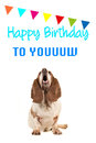 Basset hound looking up and singing text happy birthday to you on a birthday card Royalty Free Stock Photo