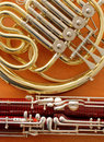 Bassoon and French horn musical instruments Royalty Free Stock Photo