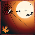 Bat versus spider Stock Images