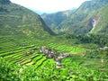 Batad Rice Terraces Village Royalty Free Stock Photo