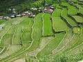 Batad village Royalty Free Stock Photo