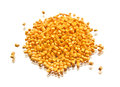 Batch of plastic polymer granules yellow isolated on white Royalty Free Stock Photography