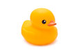 Bath Duck Royalty Free Stock Photo