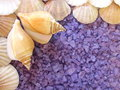 Bath salt and shells violet Stock Photography