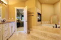 Bathroom with bath tub and fireplace Royalty Free Stock Photo