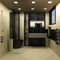 Bathroom black design