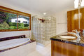Bathroom with glass block screened shower Royalty Free Stock Photos