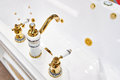 Bathtub and luxury faucet Royalty Free Stock Photo