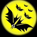 Bats on a moon background