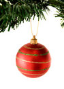 Bauble in red hanging from christmas tree Royalty Free Stock Images