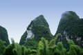 Bautiful guilin scenery beautiful bamboo trees and hills in yangshuo Stock Image