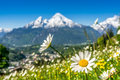Bavarian alps with beautiful flowers and watzmann in springtime bavaria germany artistic view of landscape the blurry mountain the Royalty Free Stock Images