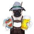Bavarian german pug dog Royalty Free Stock Photo