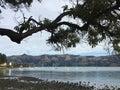 Bay in Akaroa Royalty Free Stock Photo